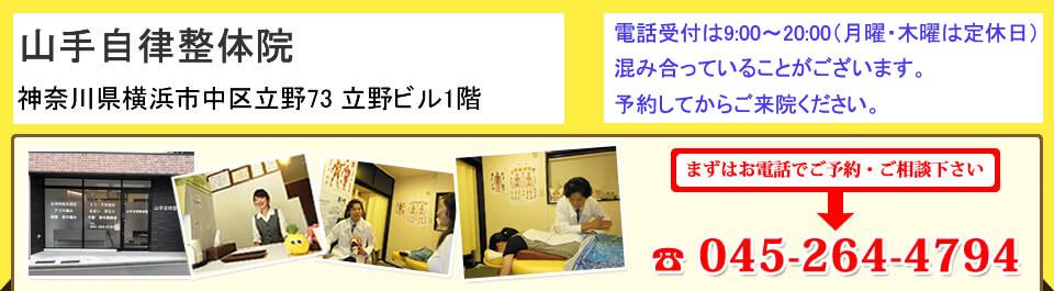 山手自律整体院 神奈川県横浜市中区大和町2-32